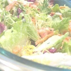 Photo of Greek Salad II by RLW401