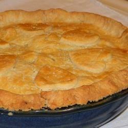Photo of Harden Your Arteries Pie Crust by COOKCOOK57