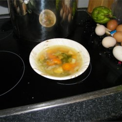 Turkey Soup with Root Vegetables Recipe