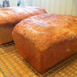 Honey Wheat Bread II Recipe