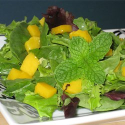 Refreshing Summertime Salad Recipe