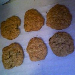 Oatmeal Raisin Cookies VI