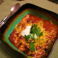 Vegetarian Tortilla Stew Recipe