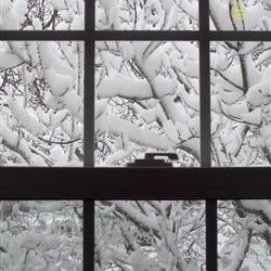 Aspiring Snowbird