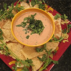 Super Bowl Salsa Dip Recipe