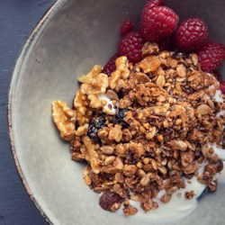 greek yogurt bowls with granola printer friendly
