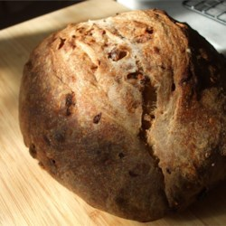 Nutty Cranberry Sourdough Bread