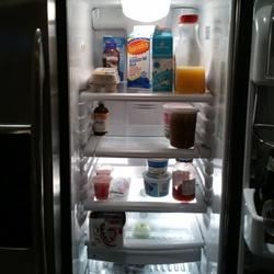Refrigerator Before Grocery Shopping