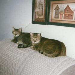 Roscoe & Toby
