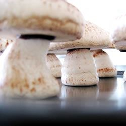 meringue mushies
