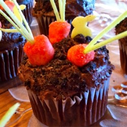 Carrot Patch Cupcake