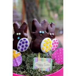 Instant Chocolate Covered Bunnies (On a Stick) Recipe