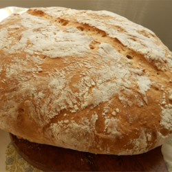 No Knead Beer Bread Recipe