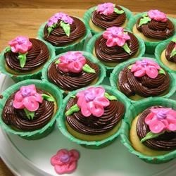 My Daughter-in-law made some beautiful cupcakes for Mother's Day