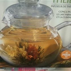 Glass Tea Container