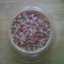 Rhubarb Pie - Single Crust