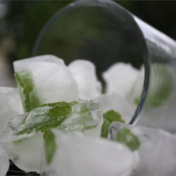 Mint Ice Cubes Recipe