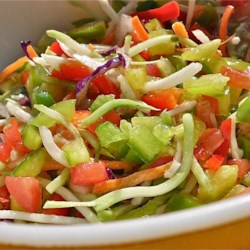 Picnic Marinated Summer Slaw Recipe