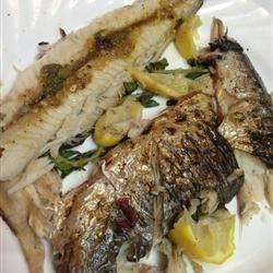 Grilled Spanish Mackerel!
