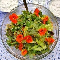 garden salad and tzaziki