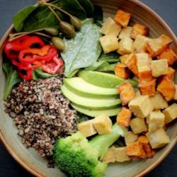 quinoa salad with crispy tofu cubes and lime vinaigrette printer