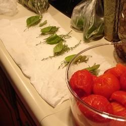 Prepping Seasoned Tomatoes for Canning