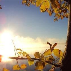 Lake - A foggy September morning
