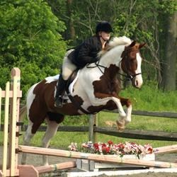 Patches and Suzi Jump at their first show together