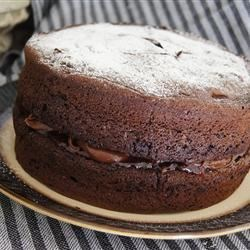 Lisa's Chocolate Chocolate Chip Cake
