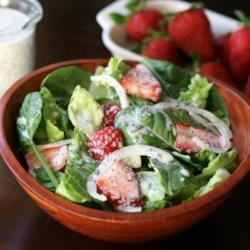 strawberry romaine salad i printer friendly