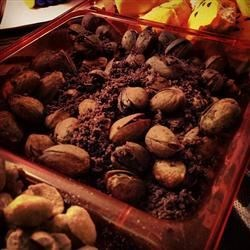 Roasted bugs aka pistachio nuts in cookie dirt