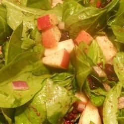 Thanksgiving Spinach Salad Recipe