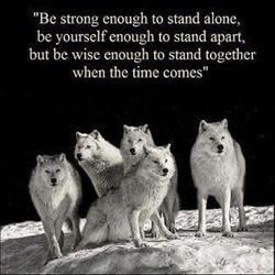 Standing Wolves