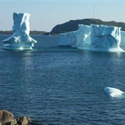 more iceburgs