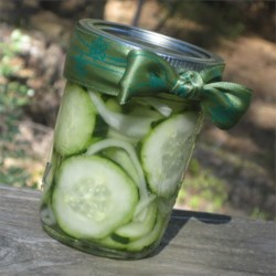 Mona's Easy Refrigerator Pickles Recipe