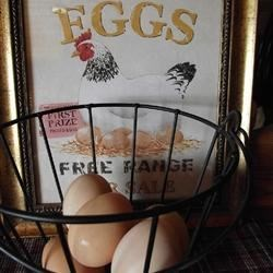 Small Basket of Eggs