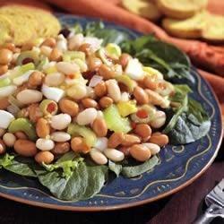 Photo of BUSH'S® Mixed Bean Salad by BUSH'S® Beans