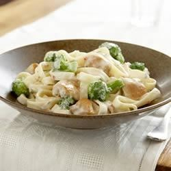 Easy Chicken and Broccoli Alfredo