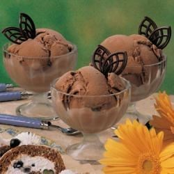 Photo of Mocha Ice Cream by Dick  McCarty