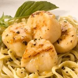 Seared Scallops with Orange-Basil Sauce