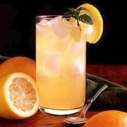 Photo of Citrus Mint Cooler by Kathy  Burkholder