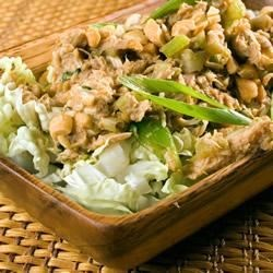 Hoisin Chicken Salad with Green Onions Recipe