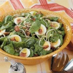 Photo of Bean Sprout Spinach Salad by Susan  Emery