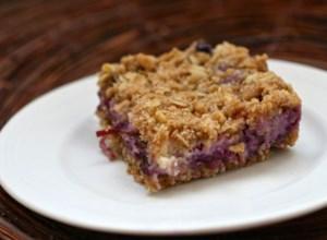 Blueberry Oat Dream Bars