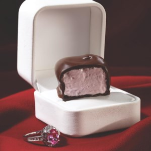 Chocolate-Covered Berry Marshmallows
