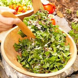 Herb & Arugula Salad with Balsamic Vinaigrette