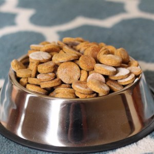 Diabetic dog treats recipe allrecipes peanut butter and pumpkin dog treats forumfinder Image collections