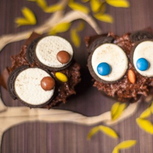 owl cupcakes recipe these owl cupcakes are a fun idea for a kids birthday party