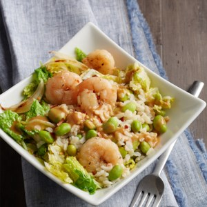 Asian Shrimp and Rice Bowls