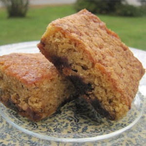 Easy new zealand squares recipe allrecipes food for the gods forumfinder Choice Image